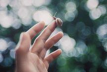 be still / Listen. / by Gina Rini-Reese