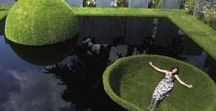 Garden &Topiary Art