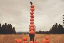 Fall/Halloween/Thanksgiving / by Dakota Hurley