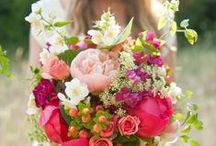 Wedding Bouquets / Wedding Bouquets / by Jamie O'Neil