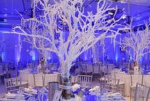Party planning / by Stacey Stiebe
