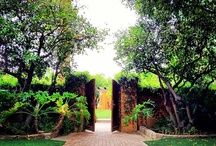 Instagram Royal Palms / Royal Palms through the magic, quirky lens of Instagram. / by Royal Palms Resort and Spa