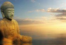Buddhism / by LA