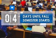 30 Days - Fall 2014 / 30 days until 2014 fall semester starts