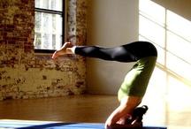 Health & Fitness / by Phalichia Lueder