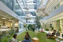 Inspiration Green Office pour un bureau écolo :D