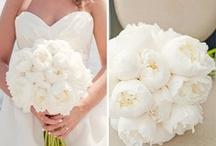 why not plan my wedding?! / by Kalli Lochner