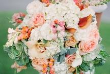 Wedding Inspiration Shoots / by Catalina Bloch