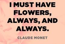 Flowers & arrangements / Cut or in arrangements. / by Jane Abernathy Hahn