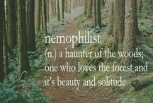 diary of a nemophilist / by Hanna Poole