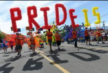 Utah Pride Festival / by The Salt Lake Tribune