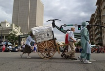 Days of '47 Parade / by The Salt Lake Tribune