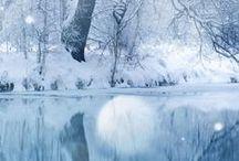 Winter / Beautiful Holiday Season