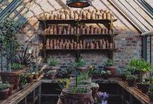 Glass Houses + Greenhouses / Beautiful glasshouses, greenhouses, indoor growing spaces, potting sheds, and planting places.