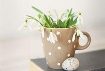 Spring / by Caroline Watts