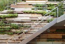 Garden Styles: Vertical Gardens / by PITH + VIGOR