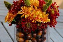 fall/halloween / Scary, creepy, good ideas for a fabulous scaretastic halloween and fall season. / by Vanessa Stade