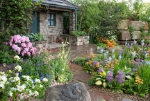 Outdoor Space / Great ideas for your yard and gardens including tips on what plants to use, patio ideas, much more!