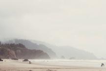 saltwater / by Meg Levins