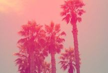 Summer <3 / by Courtney