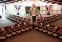 .reception. / by The Event Expert