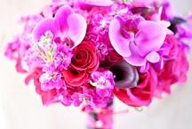 Flowers / Bloemen maken je dag!