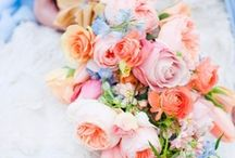 Summer Love in Pastels / Summer pastels combine blooms on soft blues with lemon, tangerine and pinks to give a distinct Summer Love vibe.