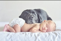 Maternity & Newborn Session Ideas / by Ashley Torgusen-Schoenack