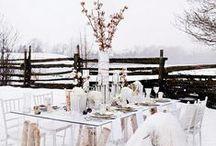 ∫ winter wonderland ❄ ∫