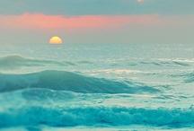 OCEAN / by sun high