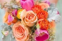 My Wedding <3 / by Lindsey Carolyn