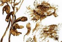 ∫ Art - Claire Basler ❀ Flowers ∫