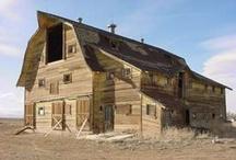 BarnsNbuildings / by Terry Lowe