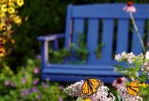 Gardening / The latest gardening tips, tricks and how-tos for your perfect Pacific Northwest garden.
