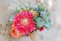 Fleurs | Flowers