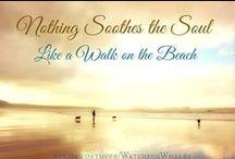 Beachaholic / by Jamie McQueen