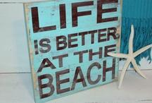 Surf/Sand/Shells & Starfish!!! <3