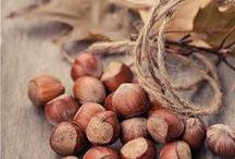 Noix | Nuts