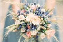 Wedding Bouquets, Boutonnieres, Centerpieces / by Chris Papuga