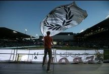 Portland Soccer / The Portland Timbers, the Portland Thorns and their fans -- the Timbers Army and the Rose City Riveters