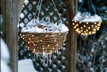 Seasonal / by Mrs Mack
