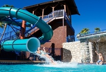 Make a Splash / Slide down our NEW waterslide, take a dip in one of our three pools, or rent a boat for the day – you're going to have a great time in AZ!