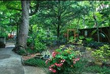 SFI Gardens / by St Francis Inn Bed & Breakfast