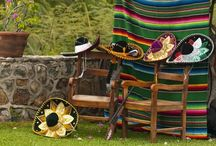 Mexican fiesta / by Mandy Poulos