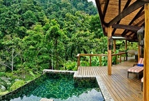Jungle Home | Outdoor Area / Inspiration for the outdoor area in my dream jungle home / yoga retreat.