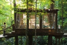Jungle Home | Guestrooms / Inspiration for the guestrooms in my dream jungle home / yoga retreat.