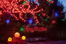 Christmas and Holiday Lighting / Enjoy the holidays with a festive lighting display.  McKay can help make the season bright.  / by McKay Landscape Lighting