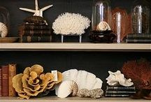 Cabinets + Corners of Curiosities / A romantic take on hoarding says my husband.