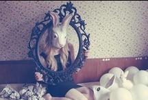 Alice in Wonderland ❤