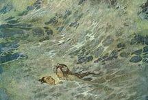 La petite sirène (illustrations)